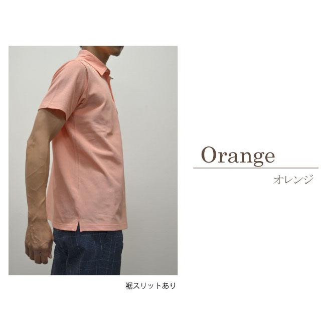 DM-2119407オレンジの商品画像
